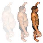筋肉の付き方の個人差について